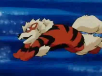 Archivo:EP063 Arcanine.png
