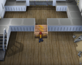 Interior S.S. Libra Pokémon XD