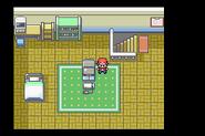 Pokemon Rojo Fuego 02