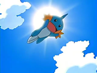 Archivo:EP425 Mudkip.png