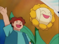 Archivo:EP137 Sunflora gigante.png
