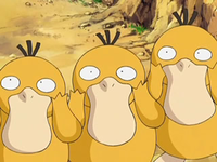 Archivo:EP556 Psyduck (8).png