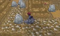 Pokémon XY Demo Kalm montado en un Rhyhorn.png