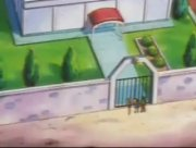 Archivo:EP237 Gimnasio Pokémon de Pueblo Caoba.jpg