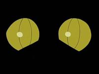 Archivo:EP533 Ojos de Gliscor.png