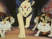 EP072 Meowth y Persian