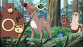 P04 Stantler.png