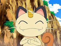 Archivo:EP556 Meowth.png