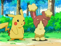 Archivo:EP478 Pikachu con Buneary.png
