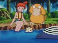 Archivo:EP170 Misty y tres de sus pokemon.png