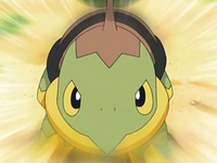 Archivo:EP554 Turtwig.png