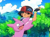 Archivo:EP554 Ash no quiere que Gligar evolucione todavía.png