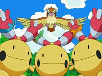 Archivo:EP539 Chingling y Pidgey.png
