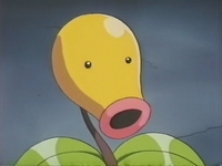 Archivo:EP172 Bellsprout del anciano.png