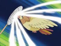 EP366 Pidgeotto usando golpe aéreo