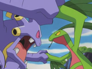 EP342 Exploud vs. Grovyle
