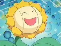 Archivo:EP137 Sunflora (3).png