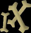 Huesos de zogro detallado