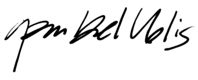 Archivo:Garm Bel Iblis signature.png