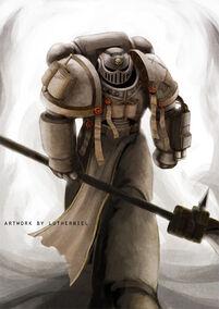 Caballero gris 3