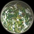 Planeta Catachan wikihammer.jpg