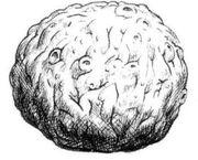 Atragantador hongo