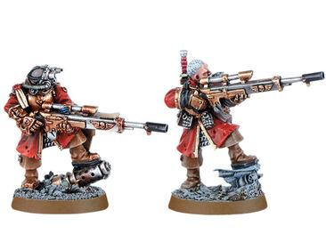 Francotiradores vostroyanos