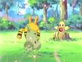 Miniatura de la versión de 13:30 27 oct 2013