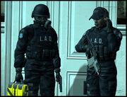 LAD operative v2