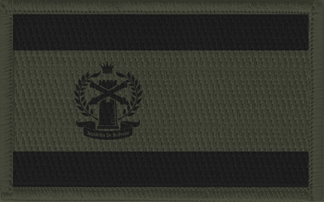 File:Jenkins Flag Patch.png