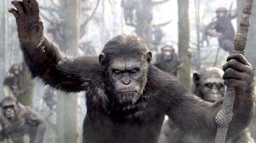 Amanecer del planeta de los simios