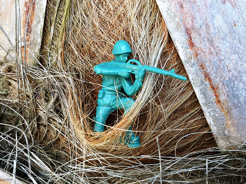 Archivo:GI Joe in the Palm Tree.jpg