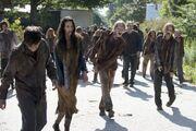 Historias zombies.jpg