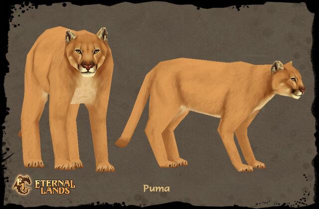 File:Creature Puma.jpg