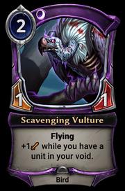 Scavenging Vulture