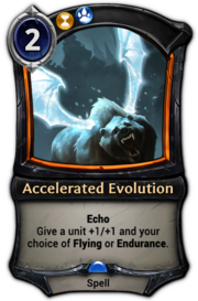 Accelerated Evolution