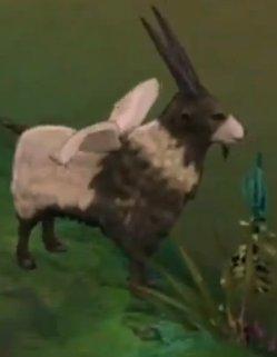 File:Black Goat.jpg