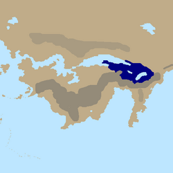 Nalcyonregion