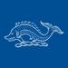TRT flag EU4