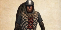 Castillian Swordsman