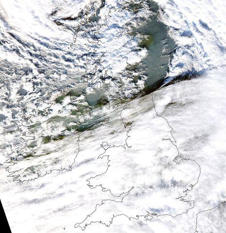 File:Windstorm Friedhelm.jpg
