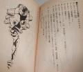 Evangelion RPG 4.png