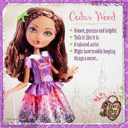Facebook - Cedar traits