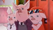 Maddie-in-Chief - startled pigs