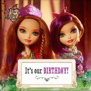 Facebook - the twins' birthdays