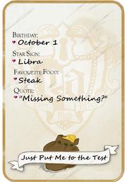 Stein bio card