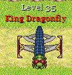 File:King Dragonfly.png