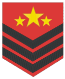 File:Wuer sergeant major.png