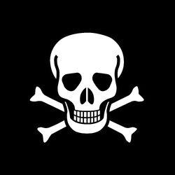 The Skull & Crossbones