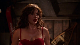 Desiree Atkins (played by Krista Allen) Smallville 47